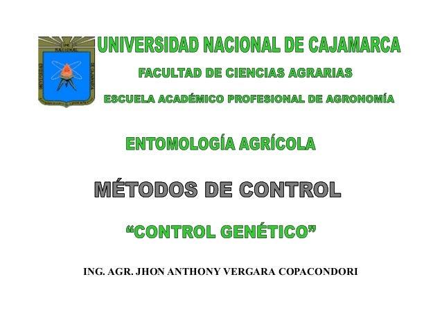ING. AGR. JHON ANTHONY VERGARA COPACONDORI