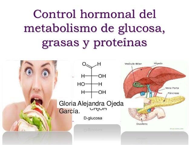 Control hormonal del metabolismo de glucosa, grasas y proteínas Gloria Alejandra Ojeda García.