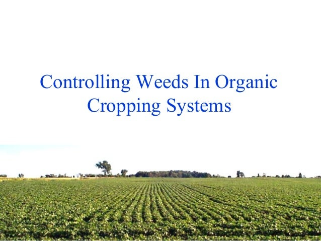 Controlling Weeds In Organic Cropping Systems Name of Presenter