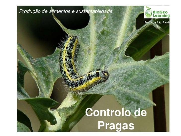 Produção de alimentos e sustentabilidade<br />Controlo de Pragas<br />