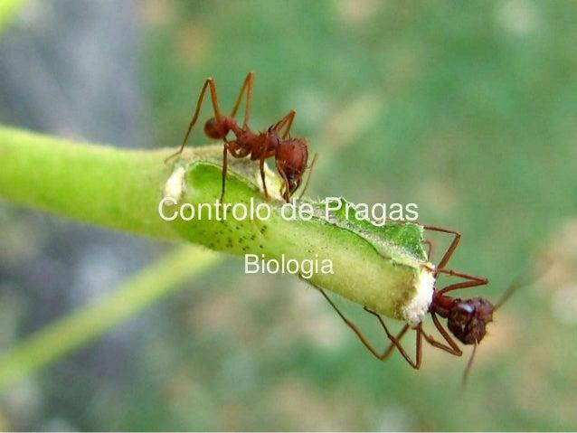 Controlo de Pragas Biologia