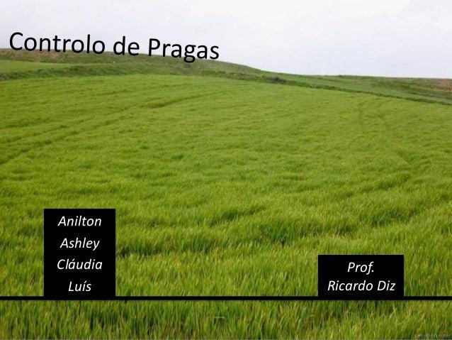 Anilton Ashley Cláudia Luís Prof. Ricardo Diz