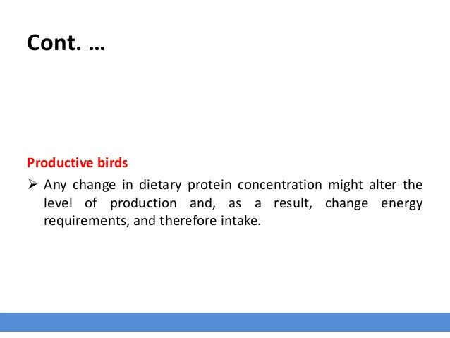 Cont. … Productive birds  Any change in dietary protein concentration might alter the level of production and, as a resul...
