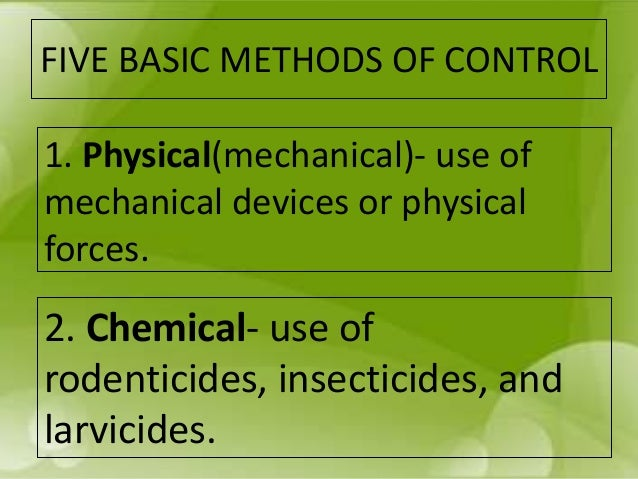 Control of rodents and insects