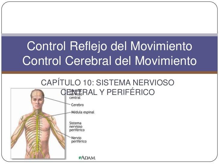 Control Reflejo del MovimientoControl Cerebral del Movimiento   CAPÍTULO 10: SISTEMA NERVIOSO       CENTRAL Y PERIFÉRICO