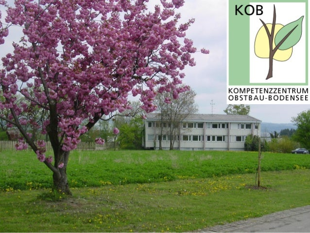 Obstanbau am Bodensee                                            Strukturdaten:                                           ...