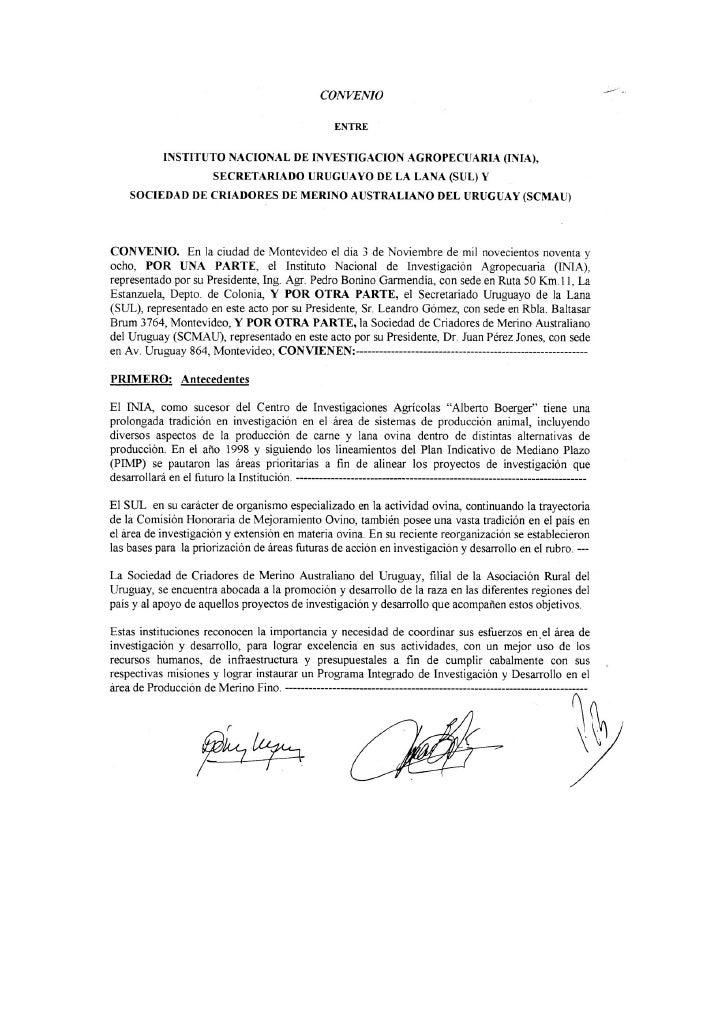 Convenio Merino Fino 03/11/98