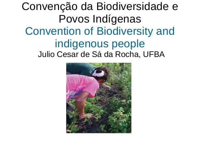Convenção da Biodiversidade e Povos Indígenas Convention of Biodiversity and indigenous people Julio Cesar de Sá da Rocha,...