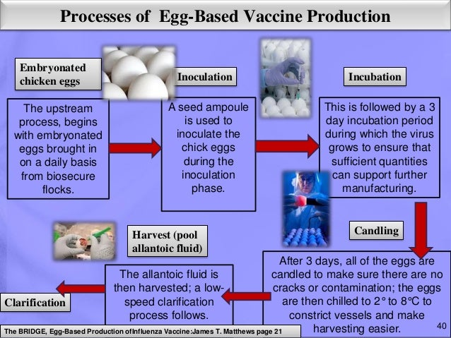 an analysis of the methods of manufacturing flu vaccines Industry's favored flu shot production process hurt efficacy last year: and that means it's time to develop new vaccine manufacturing methods.