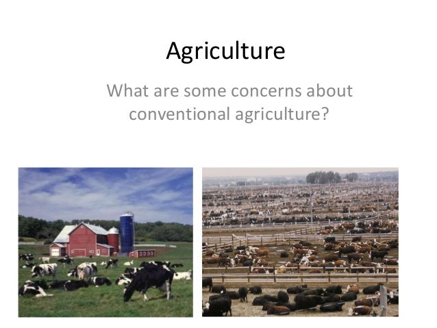 Conventional vs organic agriculture: Cornelia Harris, Cary Institute of Ecosystem Studies