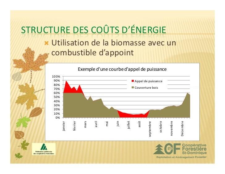 STRUCTURE DES COÛTS D'ÉNERGIE      Utilisation de la biomasse avec un      combustible d'appoint                          ...
