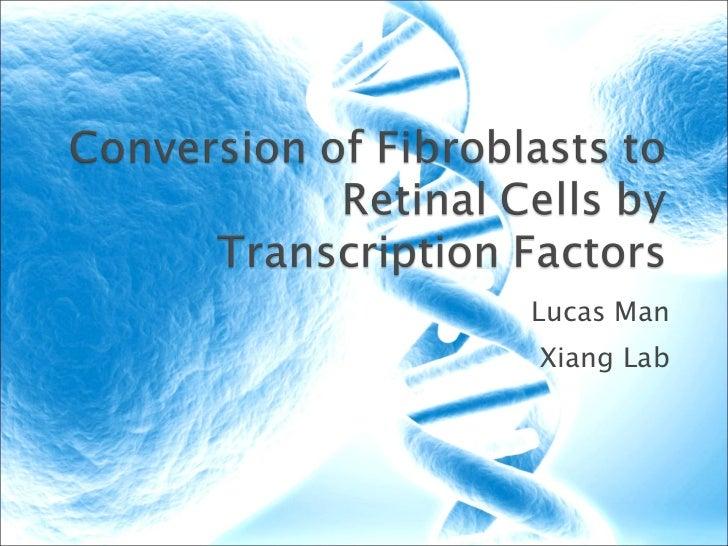 Lucas Man Xiang Lab