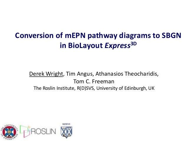 Conversion of mEPN pathway diagrams to SBGN in BioLayout Express3D Derek Wright, Tim Angus, Athanasios Theocharidis, Tom C...