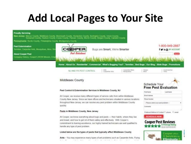 www.BigFinSolutions.com Add Local Pages to Your Site