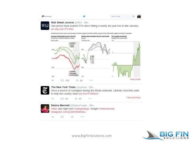 www.BigFinSolutions.com