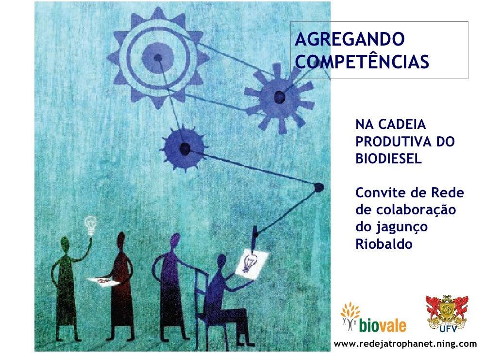 AGREGANDO COMPETÊNCIAS          NA CADEIA        PRODUTIVA DO        BIODIESEL         Convite de Rede        de colaboraç...