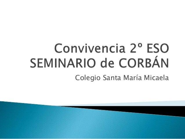 Colegio Santa María Micaela