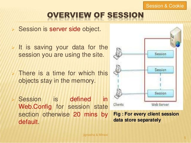 .net session vs cookie