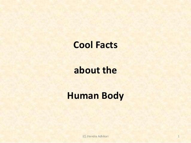 Cool Facts about the Human Body  (C) Jitendra Adhikari  1