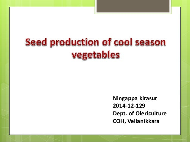 Ningappa kirasur 2014-12-129 Dept. of Olericulture COH, Vellanikkara