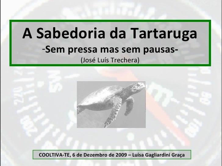 <ul><li>A Sabedoria da Tartaruga </li></ul><ul><li>Sem pressa mas sem pausas- </li></ul><ul><li>(José Luís Trechera) </li>...