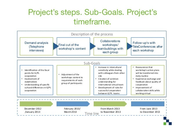 Project's steps. Sub-Goals. Project's                      timeframe.                                                     ...