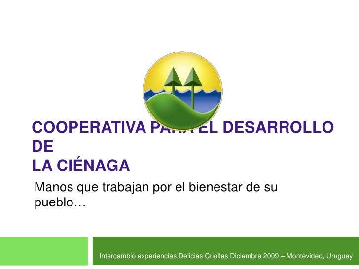 Cooperativa para el Desarrollo deLa Ciénaga<br />Manos que trabajan por el bienestar de su pueblo…<br />Intercambio experi...