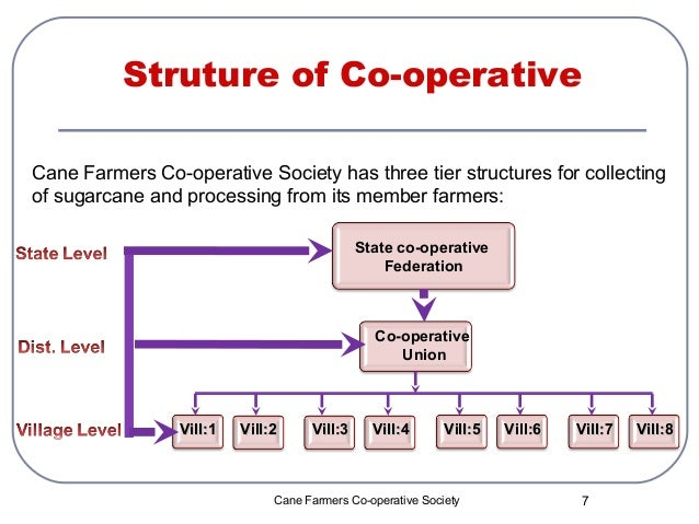 business plan cooperative society abu