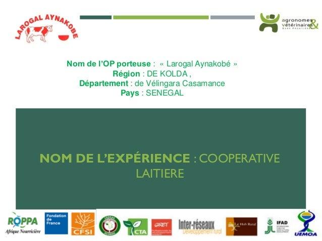 NOM DE L'EXPÉRIENCE : COOPERATIVE LAITIERE Nom de l'OP porteuse : « Larogal Aynakobé » Région : DE KOLDA , Département : d...