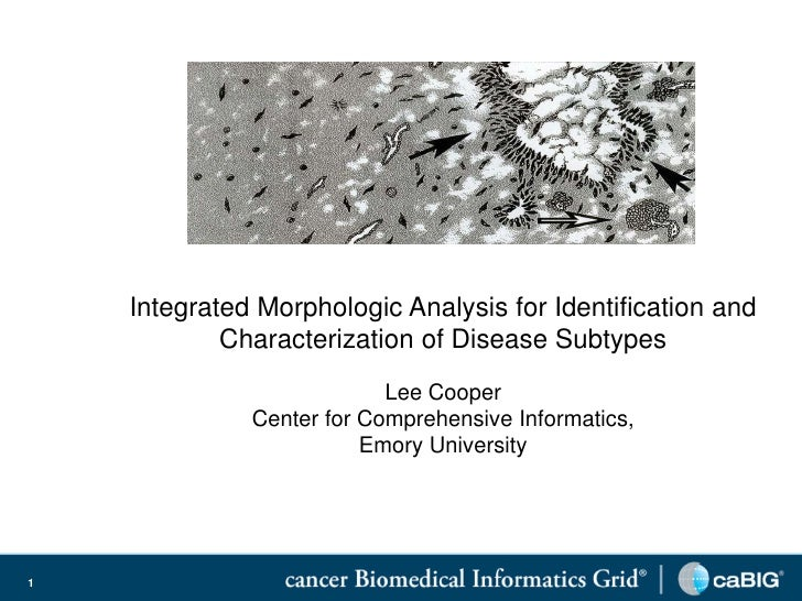 Integrated Morphologic Analysis for Identification and            Characterization of Disease Subtypes                    ...