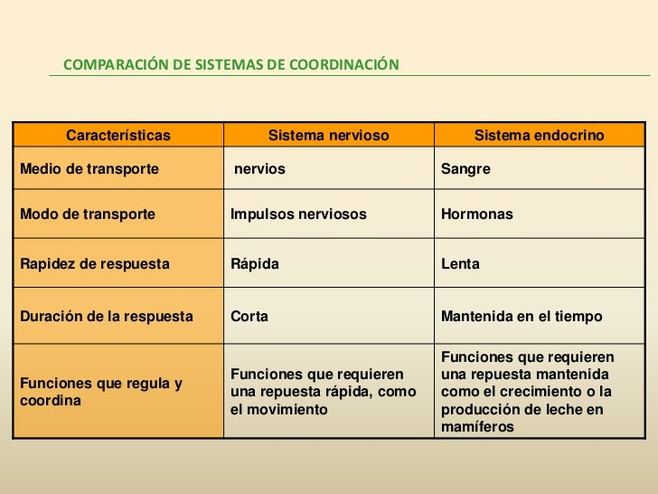 Coordinación animales Slide 2
