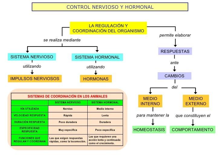 Coordinaci n y locomoci n 2012 for Funcion de un vivero escolar
