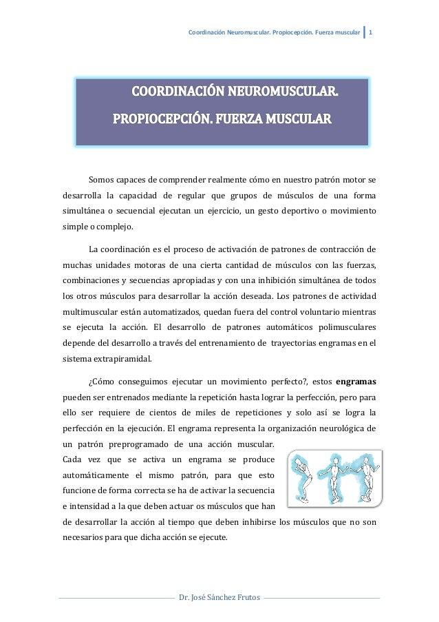 Coordinación  Neuromuscular.  Propiocepción.  Fuerza  muscular   1           Dr.  José  Sánchez  F...