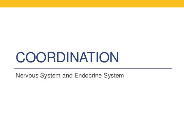 COORDINATIONNervous System and Endocrine System