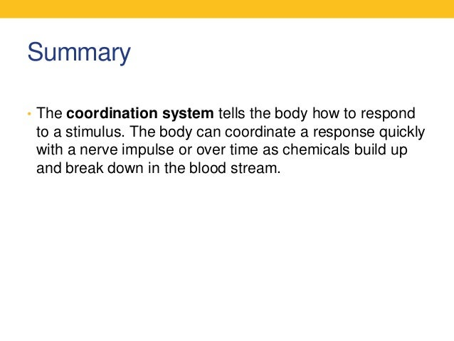 essay on the human body systems