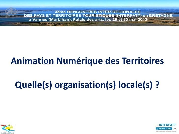 Animation Numérique des TerritoiresQuelle(s) organisation(s) locale(s) ?