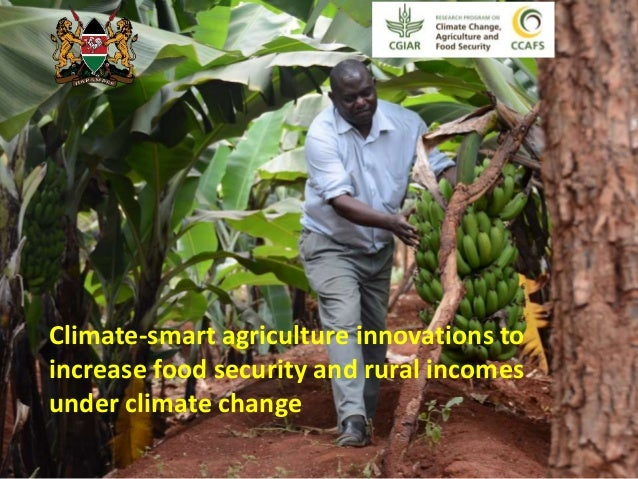 Climate-smart agriculture innovations to  increase food security and rural incomes  under climate change