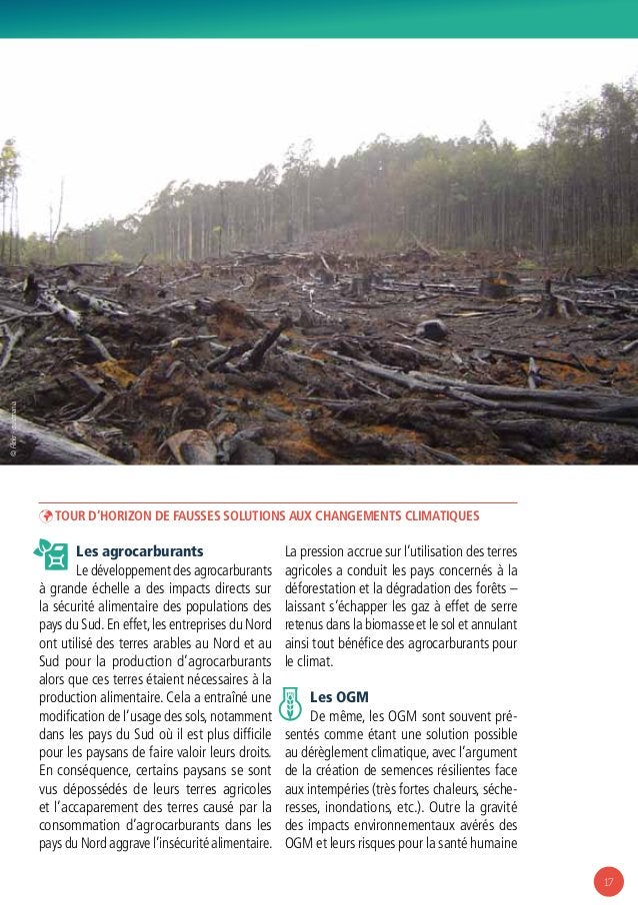 17 ÞÞ Tour d'horizon de fausses solutions aux changements climatiques Les agrocarburants Le développement des agrocarburan...