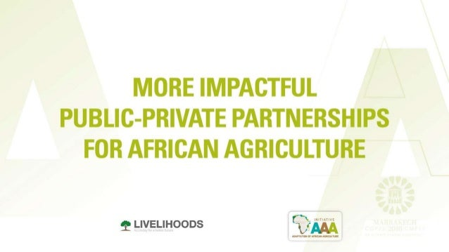 COP22: More impactful public-private partnerships for African Agriculture