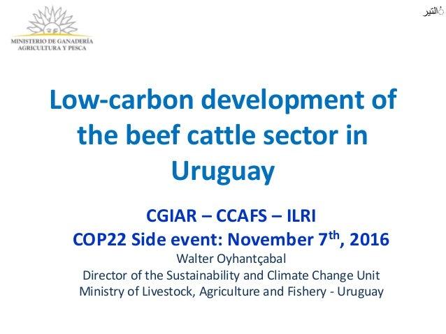 Low-carbondevelopmentof thebeefcattlesectorin Uruguay CGIAR– CCAFS– ILRI COP22Sideevent:November7th,2016 Wa...