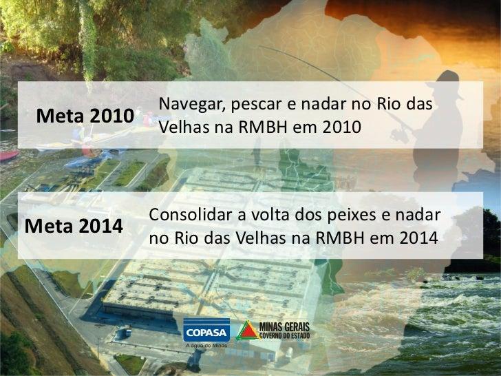 Navegar, pescar e nadar no Rio das Meta 2010    Velhas na RMBH em 2010             Consolidar a volta dos peixes e nadarMe...