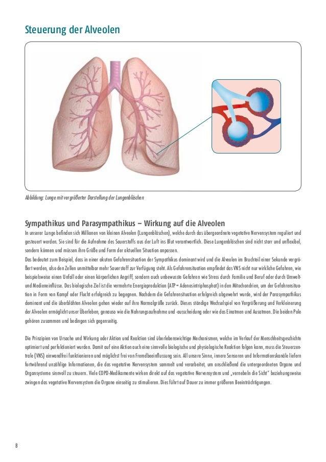 Tolle Menschliche Anatomie Artikel Fotos - Anatomie Ideen - finotti.info