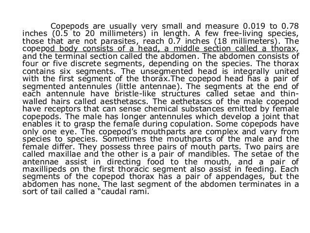Copepods are usually very small and measure 0.019 to 0.78 inches (0.5 to 20 millimeters) in length. A few free-living spec...