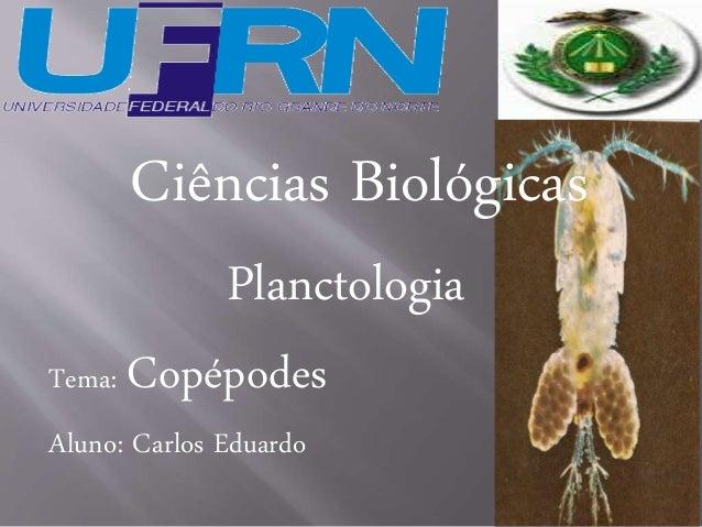 Ciências Biológicas  Planctologia  Tema: Copépodes  Aluno: Carlos Eduardo