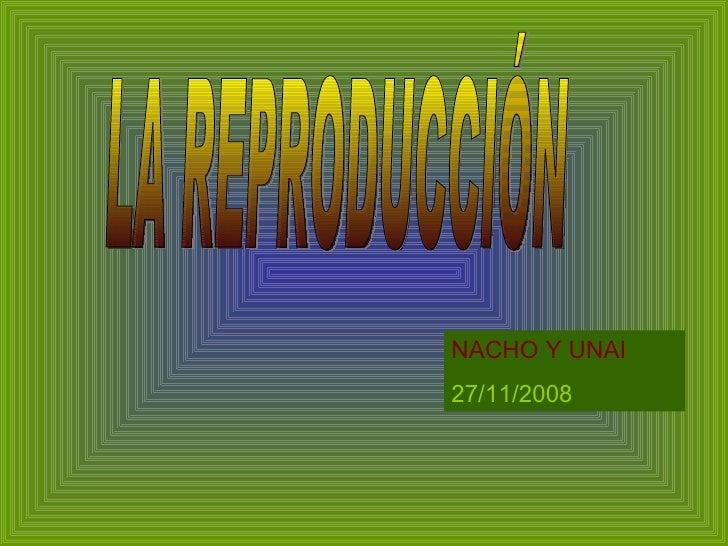 LA REPRODUCCIÓN NACHO Y UNAI 27/11/2008