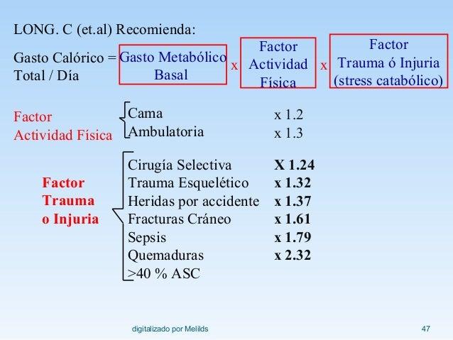 Breve guía de dieta baja en colesterol y trigliceridos
