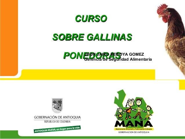 CURSOSOBRE GALLINAS PONEDORAS GOMEZ    JHON JAIRO BEDOYA    Gerencia de Seguridad Alimentaria