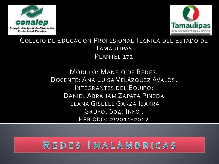 C OLEGIO DE E DUCACIÓN P ROFESIONAL T ÉCNICA DEL E STADO DE                        TAMAULIPAS                       P LANT...