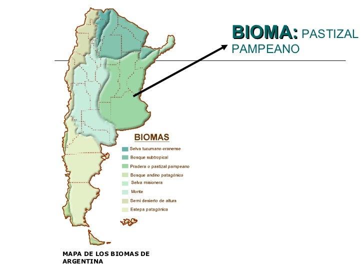 Llanura pampeana argentina for Ambientes de argentina