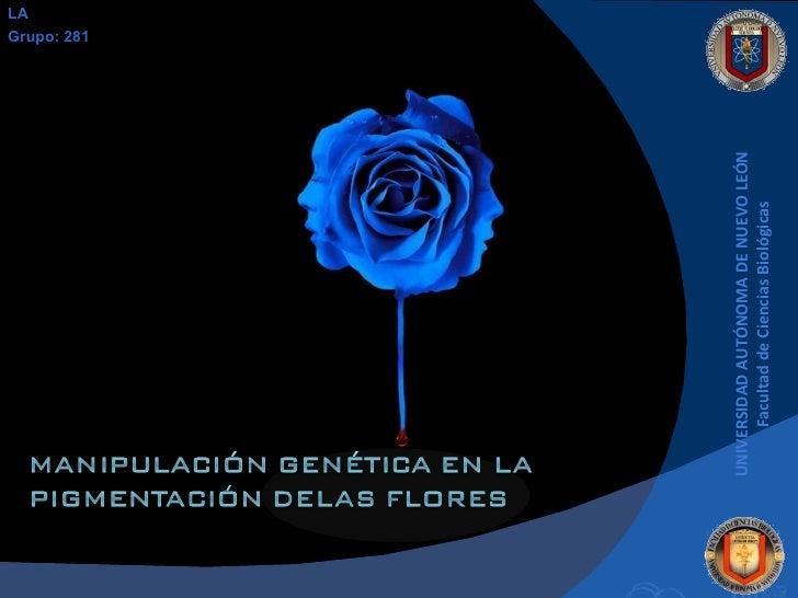 UNIVERSIDAD AUTÓNOMA DE NUEVO LEÓN Facultad de Ciencias Biológicas LA Grupo: 281